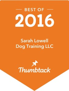 Best Trainer in 2016 puppy training